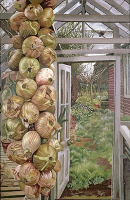 Spencer onions