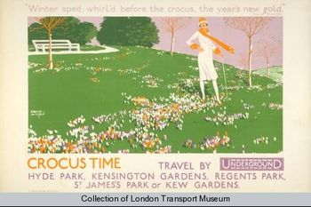 Crocus time david wilson 1926