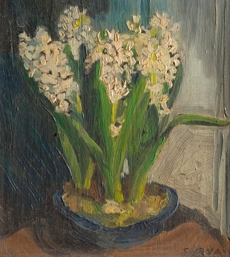 Hyacinths sally ryan